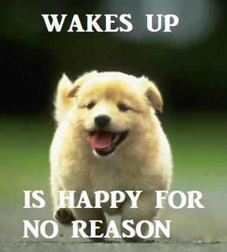 happyallthetime